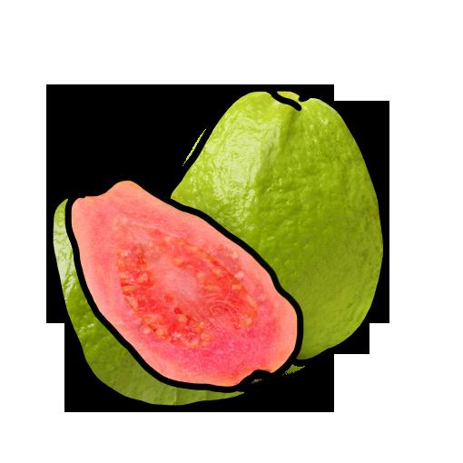 ff_guava